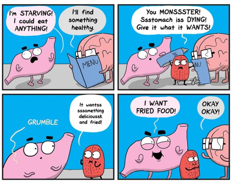 stomach-over-brain